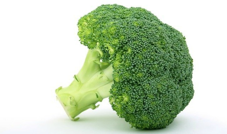 healthy food habits with broccoli