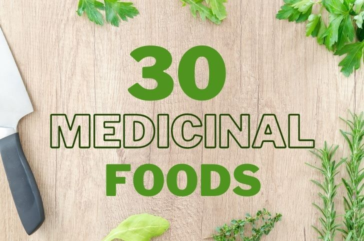 medicinal foods